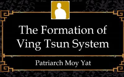Formation_VT_System