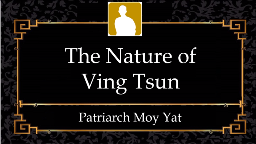 MYI4 – The Nature of Ving Tsun System